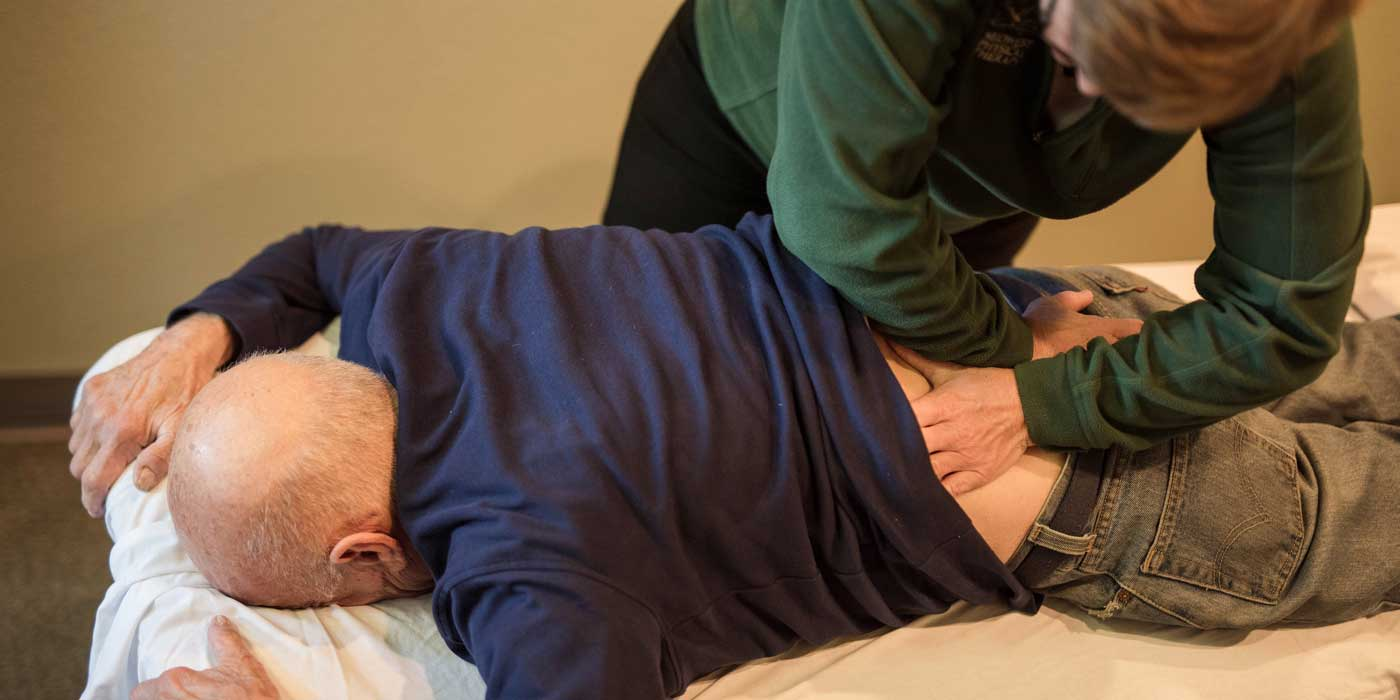 38_204-Manual-Therapy-back-(1)